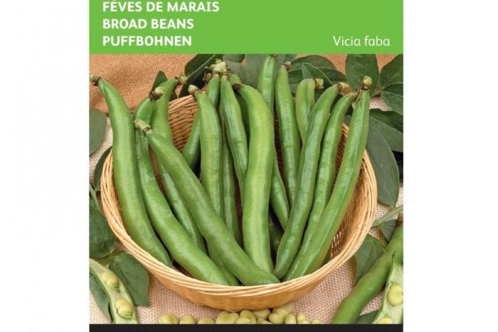 Broad Beans threefold white