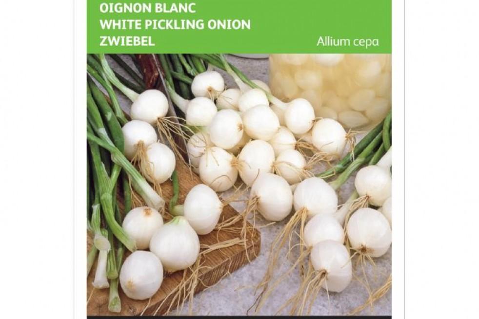 Barletta Pickling onion