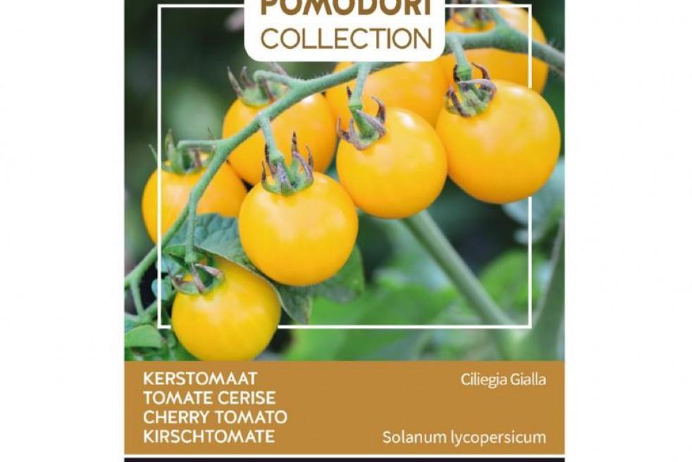 Tomate cerise jaune