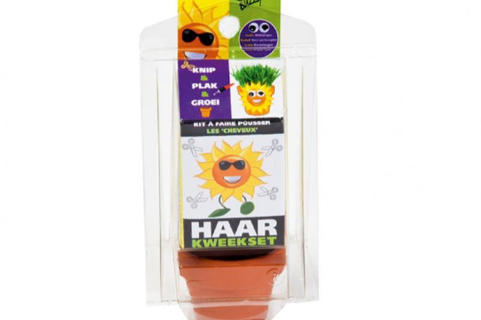 Kit à faire pousser les cheveux, tournesol-helianthus