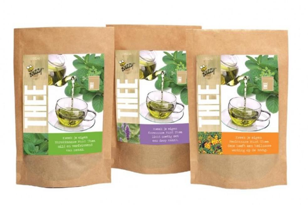 Sachet de semences de Menthe à thé
