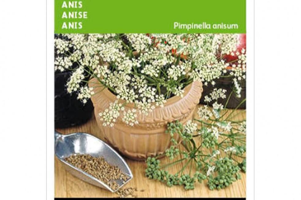 Anis Vert