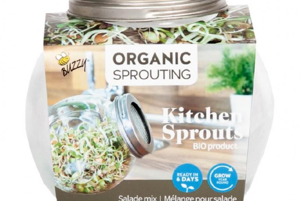 Spruitgroente glazen pot met zaden om te ontspruiten