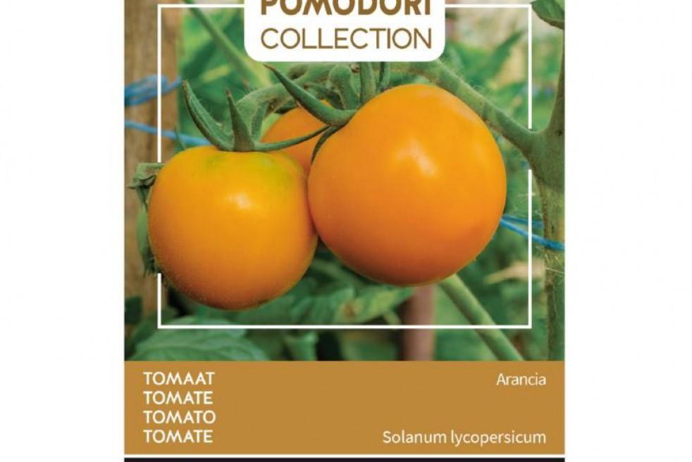 Tomato Arancia