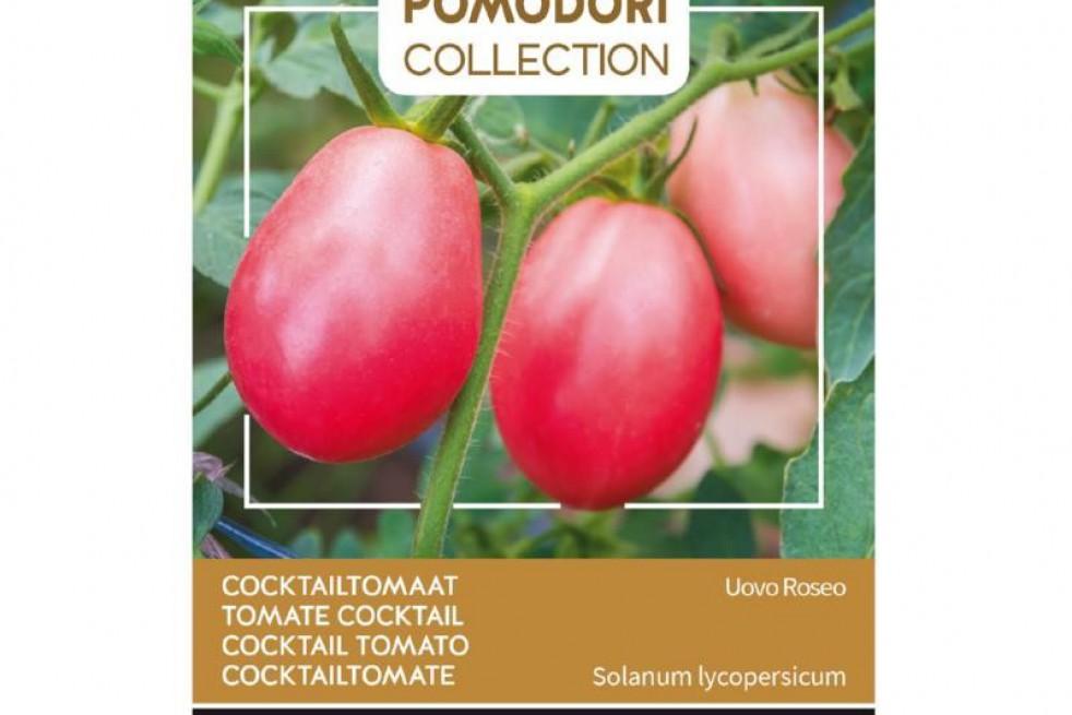 Cocktail tomato Pink Thai Egg