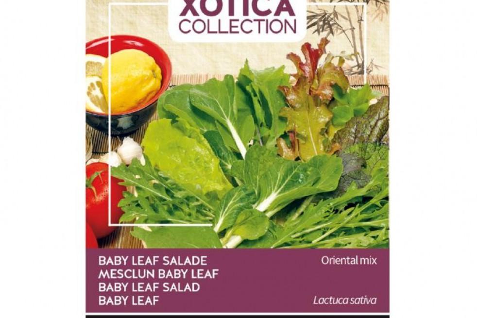 Salade Baby Leaf Mix