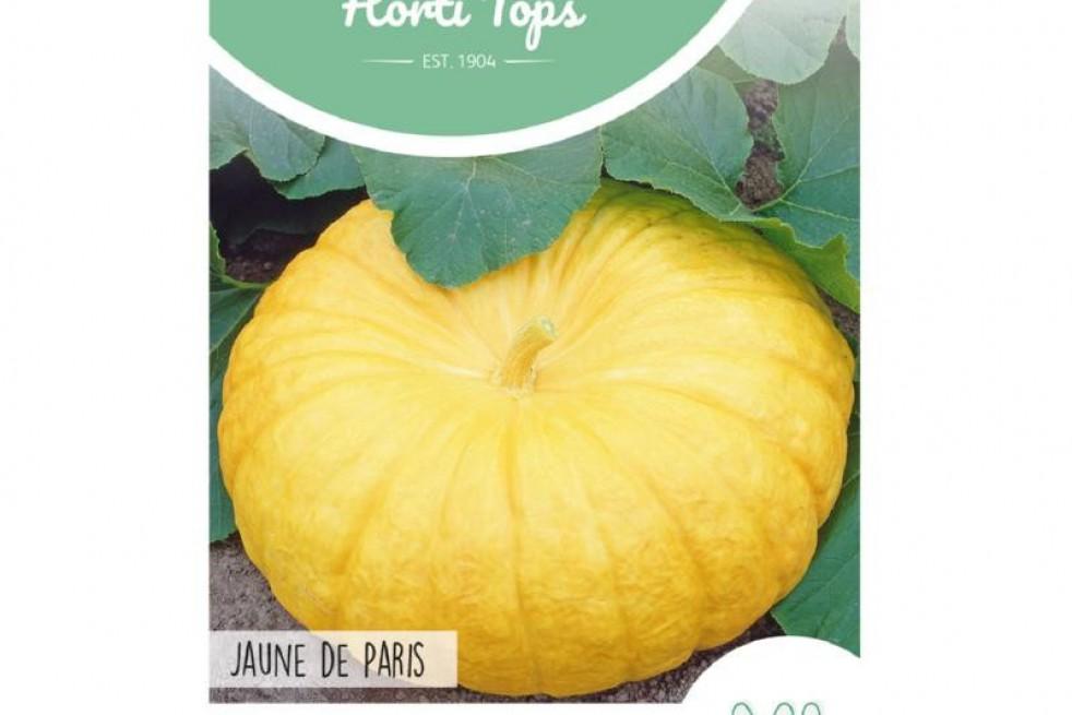 Potiron Jaune De Paris