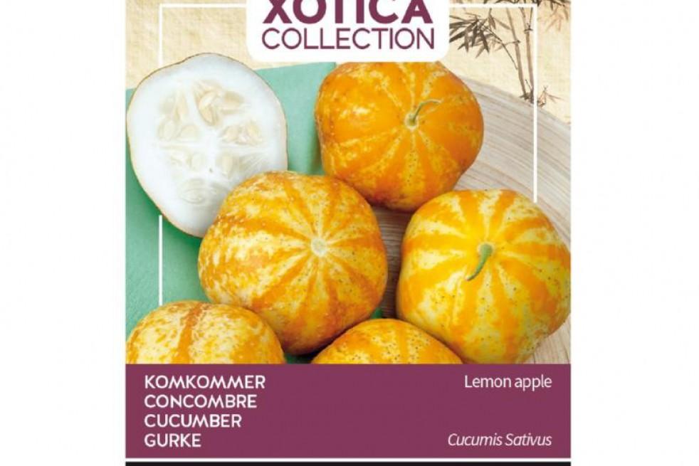 Concombre Lemon Apple